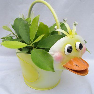 Duck Pot