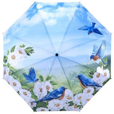 Blue Birds – Folding