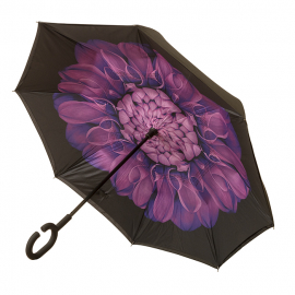 Aubergine Flower with Black