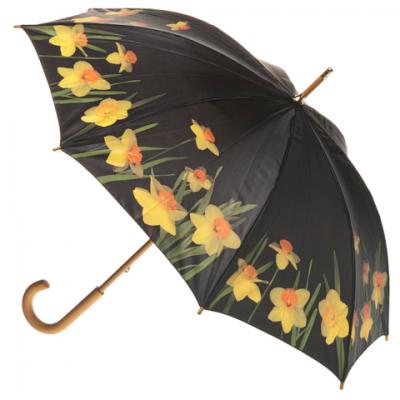 Artbrella - Stick